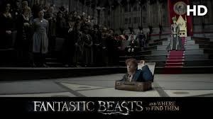 fantastic beasts and where to find them 2016 macusa hd