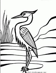 bird coloring pages for kids clean lines pinterest surface