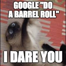 Do A Barrel Roll Meme - do a barrel roll imgflip