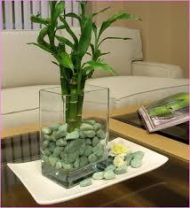 Decorative Glass Stones For Vase Vases Designs Decorative Stones For Vases Glass Gem Stones For