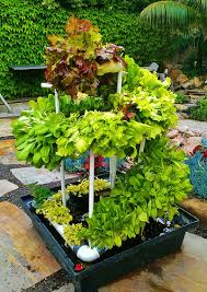 vertical vegetable garden planter