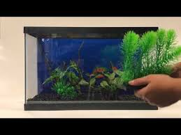 Aquascaping With Driftwood Create A Stunning Aquascape With Our New Realistic Driftwood