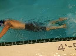 certified swim coach niecia staggs 12 photos trainers 550