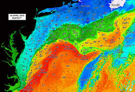 Map Of The Gulf Stream Roffs Northeastern U S Nc To Ma Spring And Early Summer Special