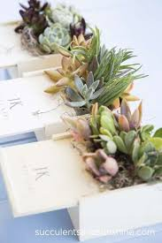 centerpieces for succulent centerpieces for a corporate event succulents and