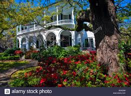 beautiful azalea garden in a victorian style home villa mansions