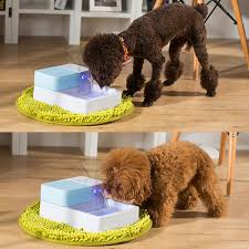 cat water fountain bowl projects inspiration 20 10 best pet