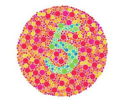 Color Blindness In Child Does Your Child Need A Color Blindness Test Best Optometrist
