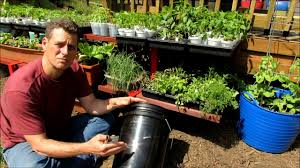 Container Gardening For Food - setting up a 5 gallon container for gardening line it food safe