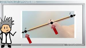 Glide Reflection Worksheet Opposite Rays In Geometry Definition U0026 Example Video U0026 Lesson