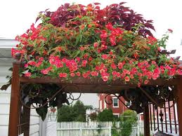 Where To Buy Large Planters by 8 Fresh And Fun Diy Outdoor Planter Ideas Hgtv U0027s Decorating