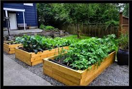Small Vegetable Garden Designs Markcastroco - Backyard vegetable garden designs