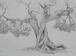 pencil drawing tree drawing art gallery