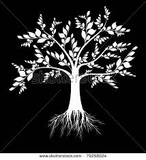beautiful tree isolated on white stock vector 98276570