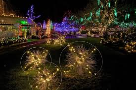 Vandusen Botanical Garden Lights What To Expect At The Vandusen Festival Of Lights
