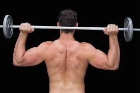 bulletproof shoulders a shoulder training guide stack