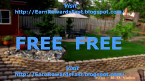 our backyard makeover the final reveal emily henderson images on