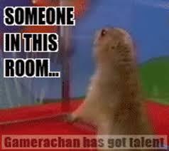 Dramatic Squirrel Meme - dramatic squirrel meme 28 images image 128045 dramatic
