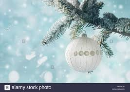 a single white bulb hangs from a frosted pine tree stock photo