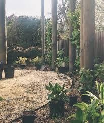 kings hall rd u2014 lara behr garden design