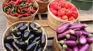 cuisine saison produits de saison pourquoi les privilégier en cuisine