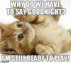 Funny Goodnight Memes - hilarious good night meme