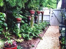 Backyard Ideas Uk Small Low Maintenance Garden Front Ideas Uk The Inspirations