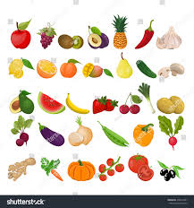 collection fruits vegetables stock vector 435914491 shutterstock