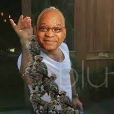 Most Hilarious Meme - 11 of the most hilarious memes from sona2017 fin24