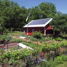 self sustaining garden a plan for food self sufficiency modern homesteading mother