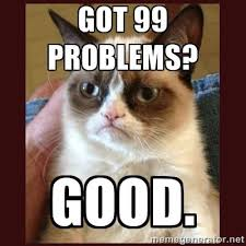 Cat Problems Meme - 126 best grumpy cat images on pinterest funny stuff funny things