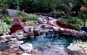 diy pond kits harbs oasis