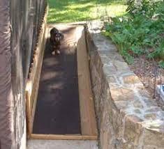 ideas to protect dachshund backs