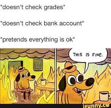 Everything Is Fine Meme - pretending everything is fine lol lol pinterest funny pics