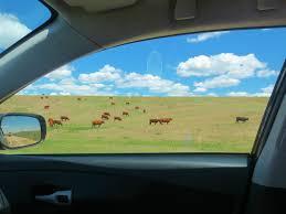Kansas scenery images Cross county drive photos kansas actually not that boring wake jpg