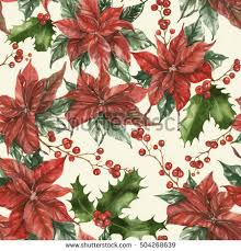 Pointsettia Poinsettia Stock Images Royalty Free Images U0026 Vectors Shutterstock