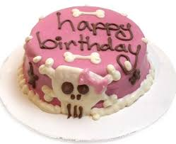 100 best birthday cake for dogs images on pinterest birthday
