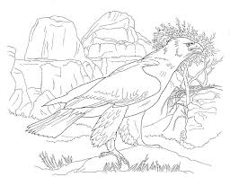 desert coloring pages coloringsuite com
