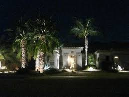 palm tree christmas tree lights lighted palm tree christmas decor lighted christmas palm tree
