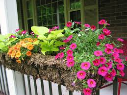 exterior beautiful deck rail planters with fresh flowers for home