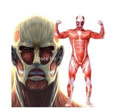 Anatomy Halloween Costumes Costume Halloween Lycra Spandex Attack Titan Cosplay