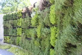 herb wall herb wall atlanta botanical garden gardening pinterest dma homes