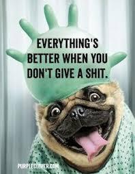 Happy Birthday Dog Meme - 1000 ideas about happy birthday dog meme on pinterest funny