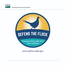 usda aphis defend the flock campaign materials and graphics game bird artwork