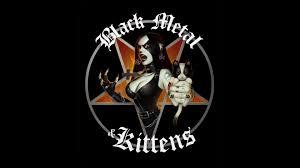 wallpaper black metal hd black metal kittens wallpaper allwallpaper in 10384 pc en