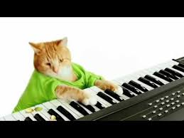 Cat Playing Piano Meme - keyboard cat s wonderful pistachios commercial youtube