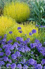 216 best flower garden ideas images on pinterest flower