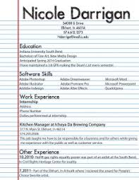 examples of resumes list computer skills resume example for