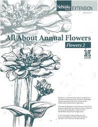 All About Flowers - flowers 2 u2013 all about flowers 4 h youth development unl