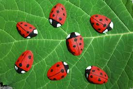 summer craft for kids ladybug magnets